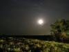 Ночь в степи